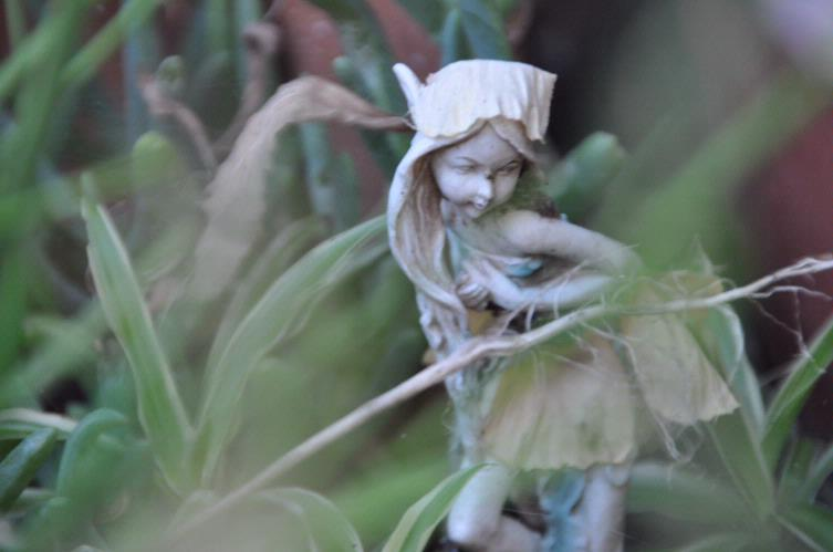 Fairies In The Garden 14 of 16