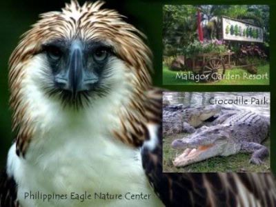 Philippine Eagle Center 11 of 15