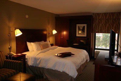 Most Rooms Can Accommodate Up To 4 Guests In A Room. 13 of 15