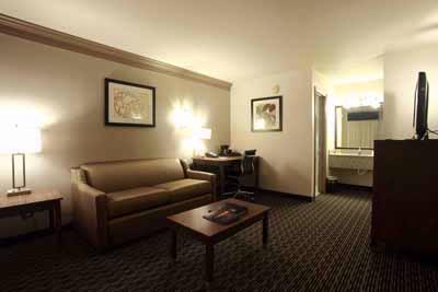 King Executive Suite 16 of 21