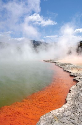 Wai-O-Tapu Thermal Reserve Close To Rotorua. 16 of 16