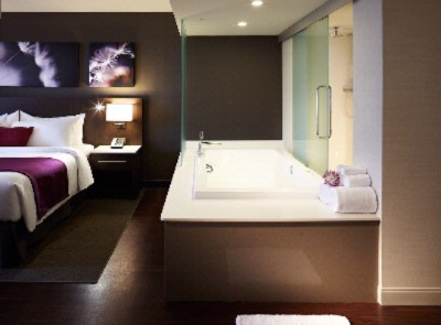 Jacuzzi Suite 7 of 16