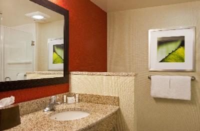 Guest Baths Feature Granite Countertops And Premium Amenities 14 of 23