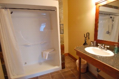 Silver Room -Walk In Shower Or Tub Shower Combination 6 of 15