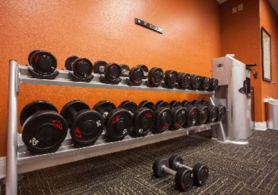 Variety Of Free Weights In The Fitness Room 15 of 21