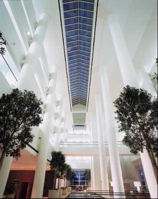 Look Up And Enjoy The Sky View From Our M.i. Greatroom Atrium. 5 of 12