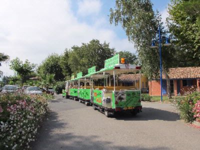 Le Petit Train D\'argelès (Shuttle To The Beach In July/august) 24 of 26