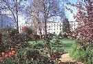 Eccleston Square 2 of 2