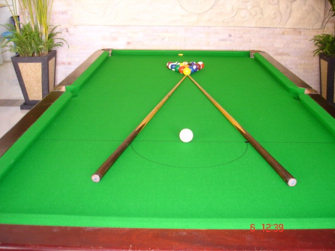 Snooker 29 of 30