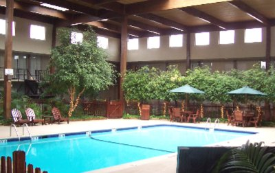 Indoor Heated Pool 4 of 14