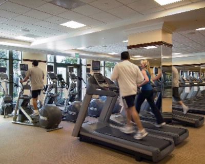 Large Modern Fitness Center Overlooks Gardens And A Waterfall 9 of 16