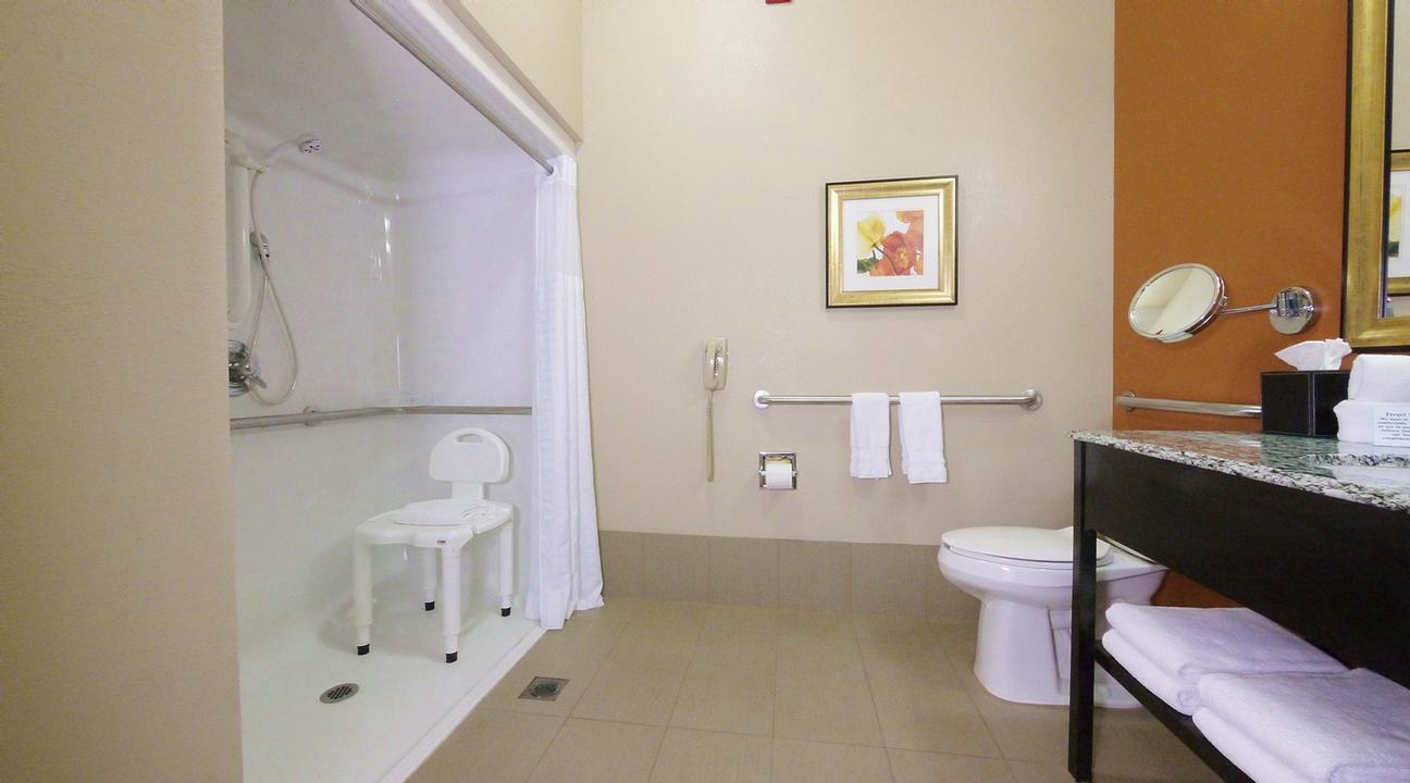 Handicap Accessible Bathroom 14 of 28