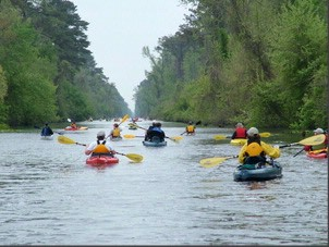 Chesapeake\'s Great Dismal Swamp Kayakers 15 of 15