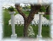 Natural Heart Tree for Wedding Ceremonie 9 of 10