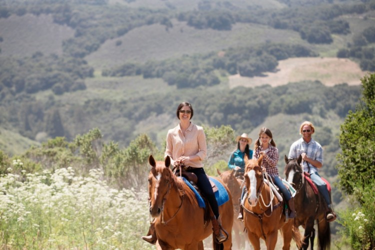 Horseback Trail Rides 12 of 16