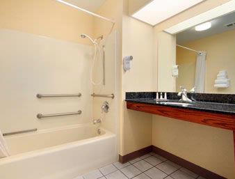 Handicap Accessible Bathroom 4 of 5