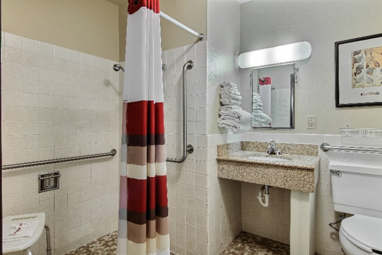 Ada Compliant Guestroom Bathroom 14 of 18