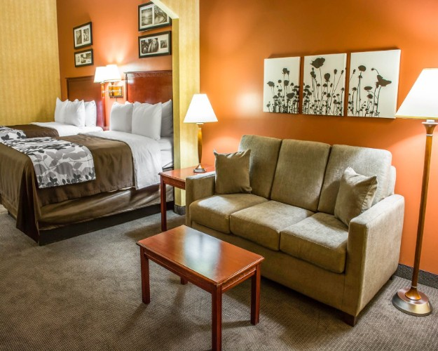 Suite Two Queen Bedroom With Sofa Bed 12 of 16