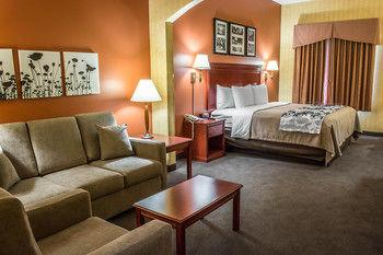 Suite King Bedroom With Sofa Bed 9 of 16