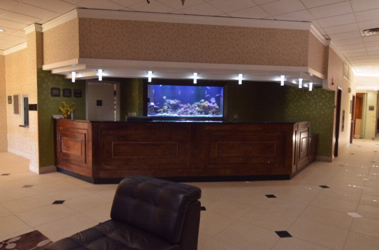 Front Desk Aquarium 4 of 21