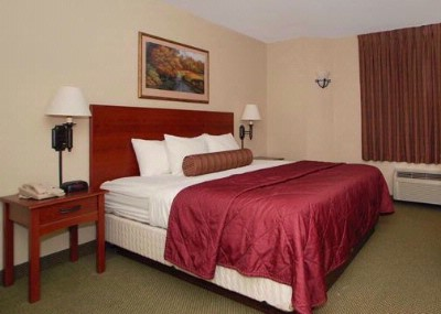 Our Rooms With King Beds 4 of 11