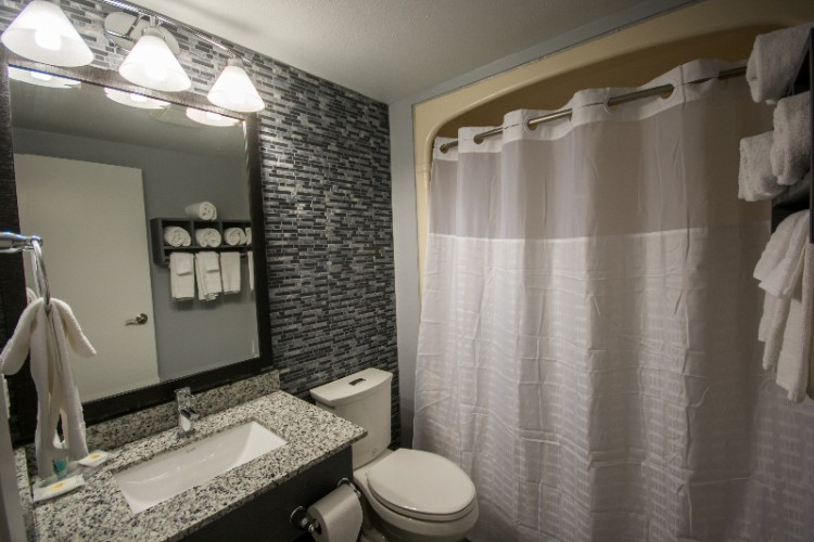 Newly Renovated Guest Bathroom 5 of 17