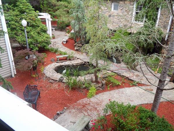 Our Courtyard And Koi Pond 4 of 11