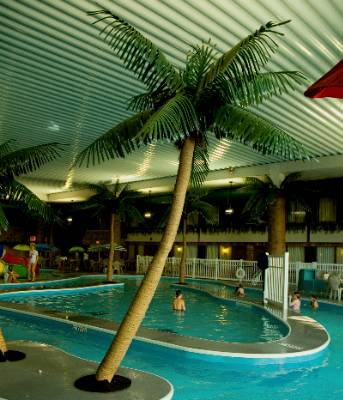 Image of Ramada Monkey Cove Water Park