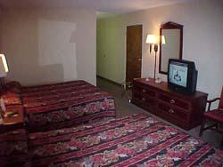 Double Queen Room 3 of 4