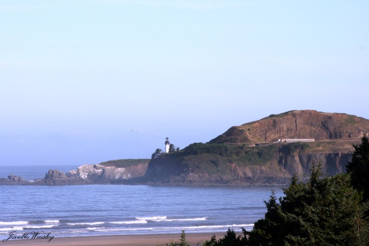 Yaquina Lighthouse From Ocean View Guestrooms 21 of 24