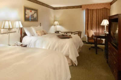 Luxurious Rooms With 2 Beds 7 of 9