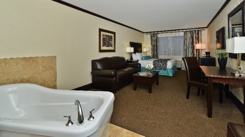 Premier Spa Suite 8 of 11
