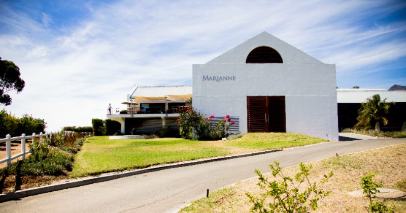 Marianne Wine Estate & Guesthouse 1 of 3