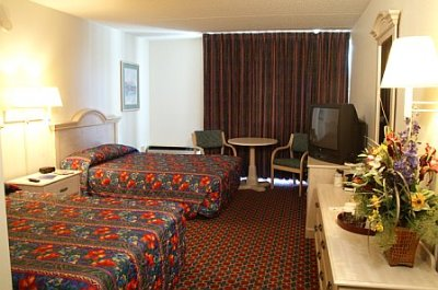 Standard Double Room 7 of 26