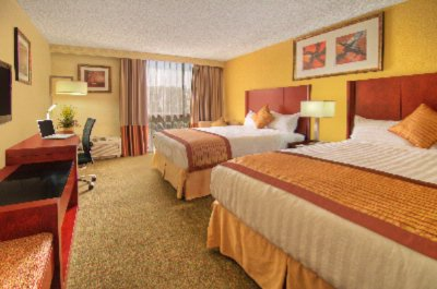 2 Queen Beds The Palmdale Hotel 2 of 10