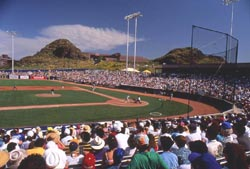 Spring Training In Tempe 8 of 10