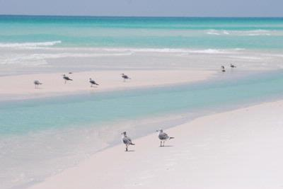 Emerald Green Water Sugar White Sand And All Waiting For You To Enjoy. 17 of 24