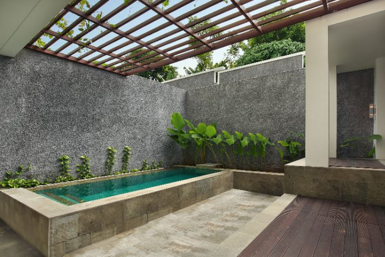 Deluxe Plunge Pool 6 of 16
