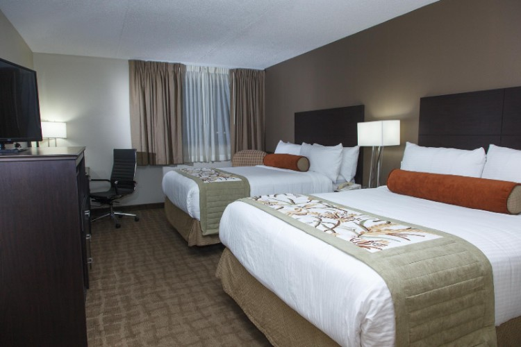 Newly Renovated Double Queen Executive Room 3 of 24