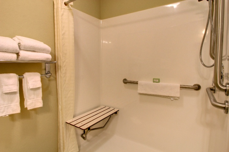 Handicap Accessible Shower 3 of 22