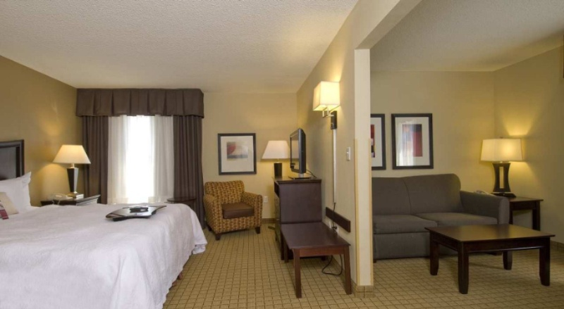 King Suite With Additional Living Space And Sofa Pullout Sleeps 2 (Double Size Mattress On Couch) 10 of 13