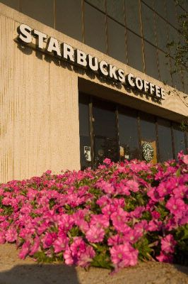 Starbuck\'s In Westport Plaza 20 of 22