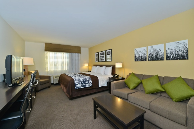 Executive King Suite 2 of 15