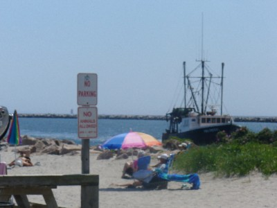 Bask In The Sun And Watch The Fishing Boats 6 of 7
