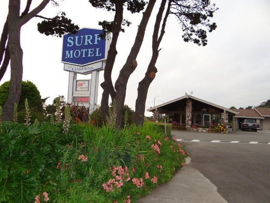Surf Motel & Gardens 1 of 16