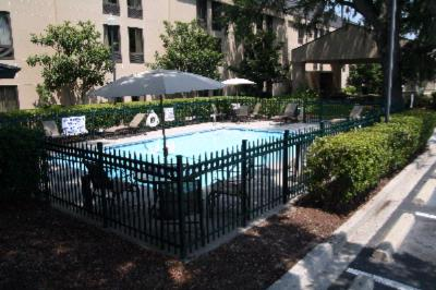 Outdoor Pool 8 of 16