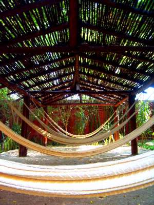 Hammocks Palapa Resting Place 16 of 16
