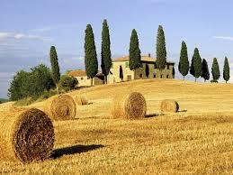 Val D\'orcia 10 of 14