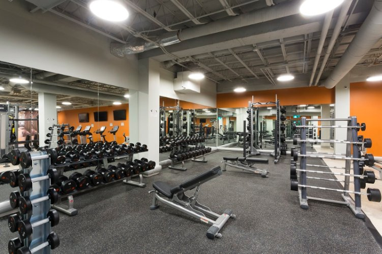 Fitness Room 8 of 11