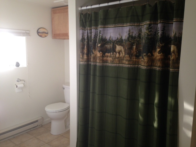 Private Bathroom With Onsite Laundry Facilities 10 of 12